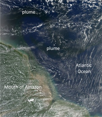 The dissolved organic carbon from the Amazon Rivers spreads into