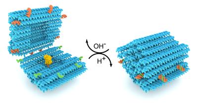Tutkijat kehittivät DNA:sta älykkään nanokapselin lääkkeiden kuljettamiseen