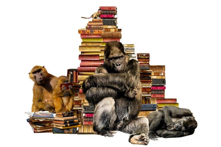 Apinat ja kirjat