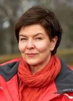Pietikäinen Sari, professori / professor