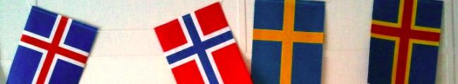 Ruotsin kieli