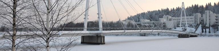 talvisilta.jpg