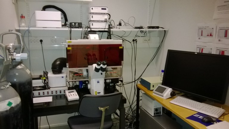 Zeiss Cell Observer HS fluorescence microscope with TIRF