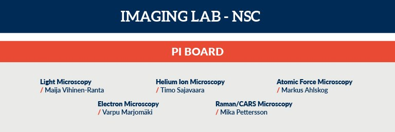 matlu_nsc-imaging.jpg