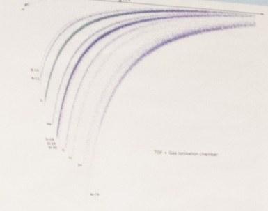 Curvesofplan.jpg