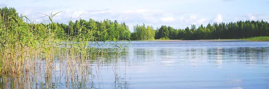 Konnevesi Tapahtumat