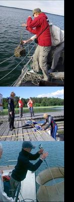 kalastuskurssia.png